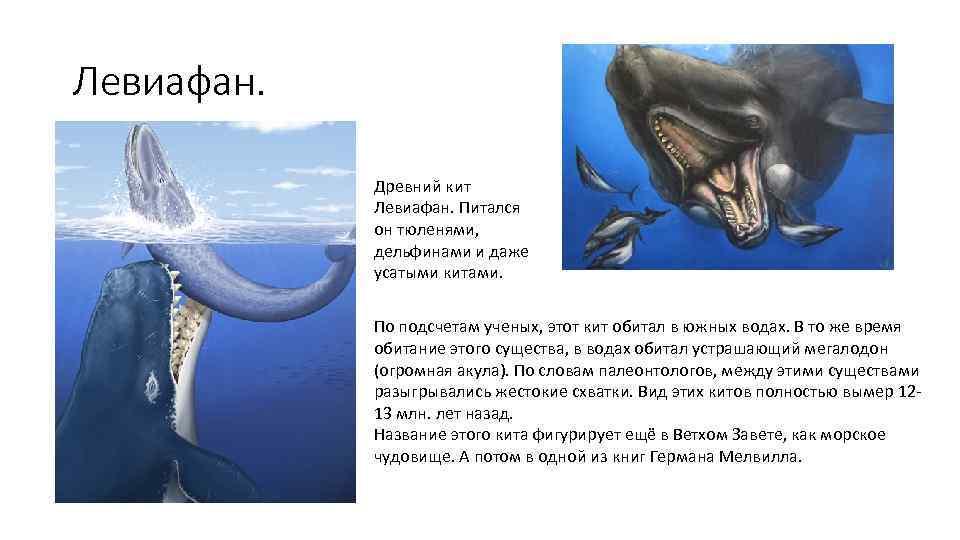 http://present5.com/presentation/1/341249984_439242875.pdf-img/341249984_439242875.pdf-6.jpg