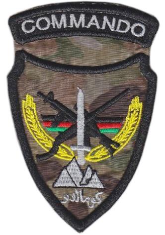 http://worldmilitary.org/img/4743558741-af-naptaf-00002.jpg